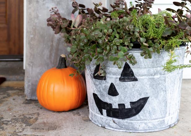 3 Pumpkin Projects That Will Outlast the Season